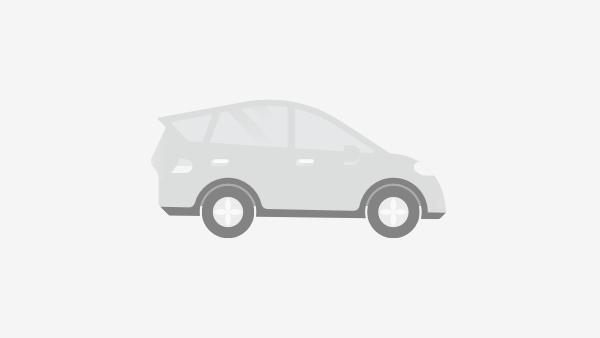 Fiat Freemont 2.0 Type JC met GPS